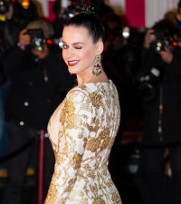 Katy Perry: I Prayed for Big Boobs and Got Them
