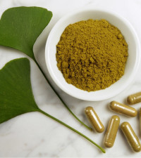 Here is everything you need to know about Phytotherapy