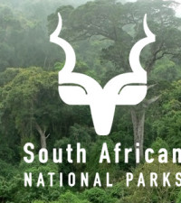 Free entrance to SanParks for all South Africans