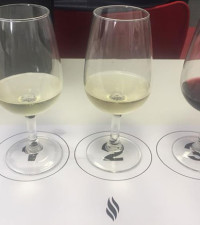 'The biggest misconception of wine is that it is elitist'