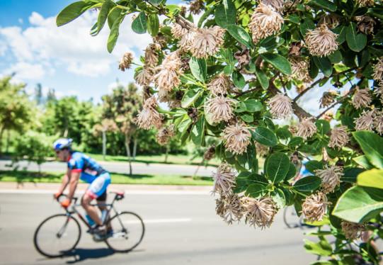 94.7km vs Short Ride