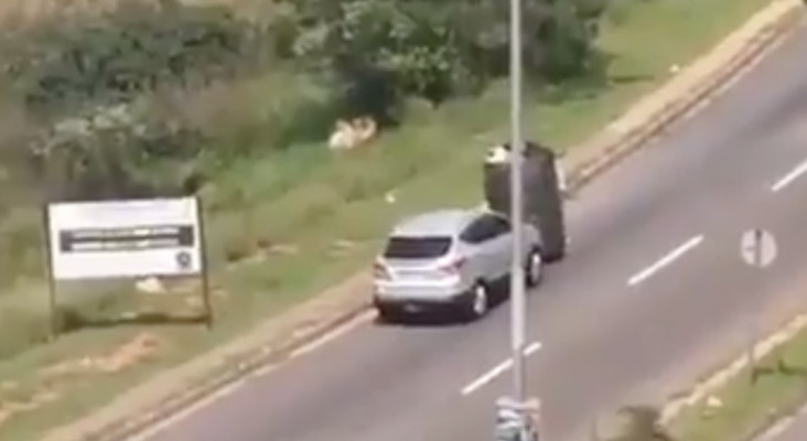 [WATCH] Driver assisting a waste reclaimer push trolly up a hill goes viral