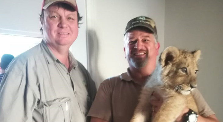 CapeNature slammed for putting down 'Simba', the lion cub found at Athlone home