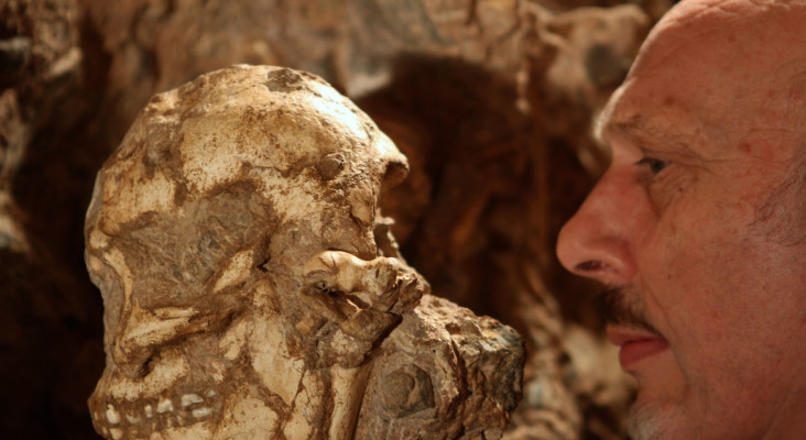 Ground-breaking Sterkfontein discovery turns crucial page in story of humankind
