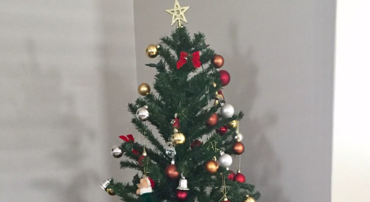 Christmas Tree Setup Instructions : Is your christmas tree set up yet