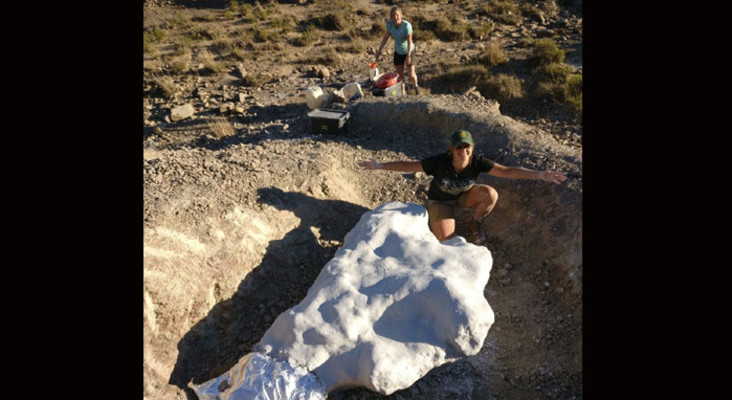 Scientists discover dinosaur bones in Sterkspruit