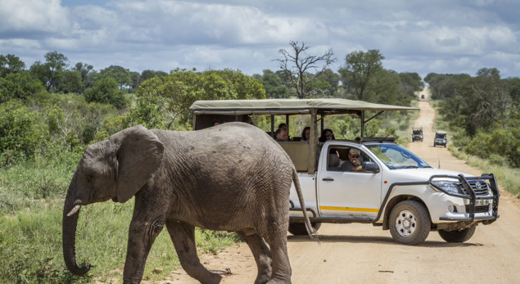 Overnight accommodation to gradually reopen from 14 August, says SANParks