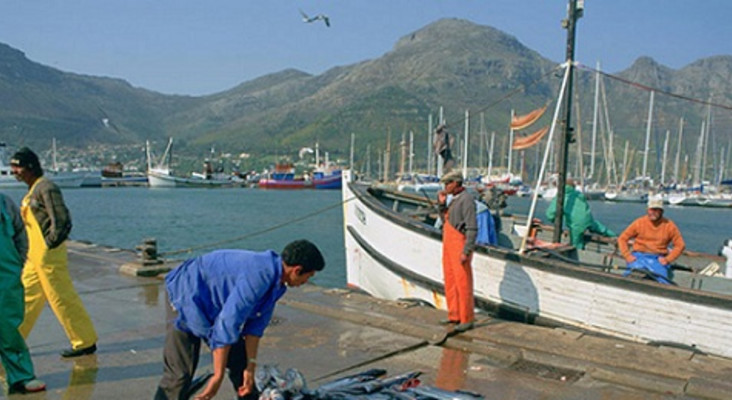 Small-scale fishers to suffer most from freeze on WC fishing quotas