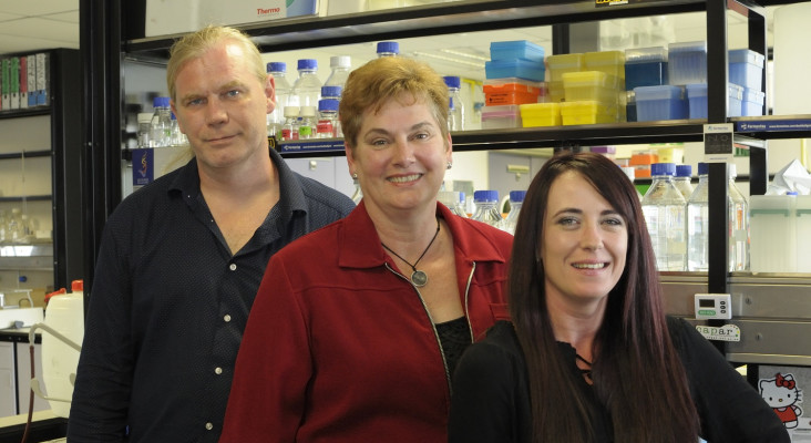 SA researchers discover potential new anti-cancer drug