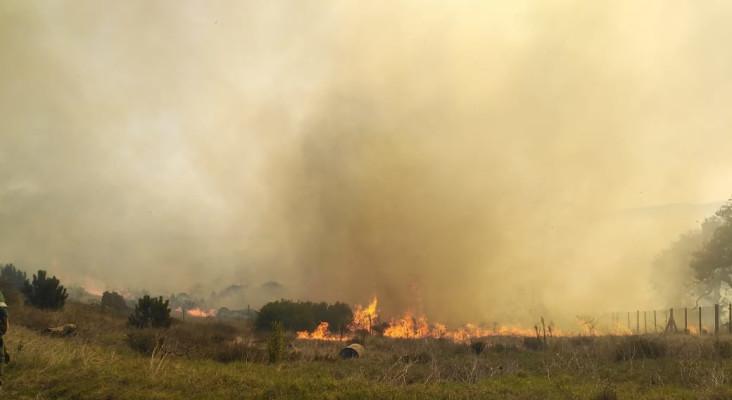 如何以及在哪里捐赠给#capetownfires救济工作的清单