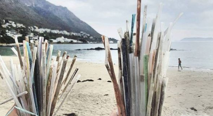 Ecofreaks say stop sucking and try these cool plastic straw alternatives instead