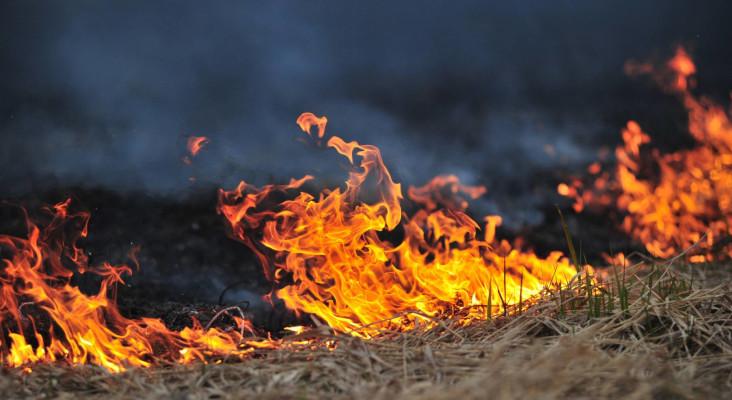 消防员仍然在Franschhoek外带争吵大规模的野火