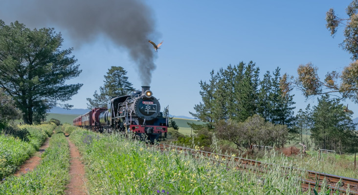 Nostalgic Ceres Rail Co. steam train transports you with old-world charm in Cape
