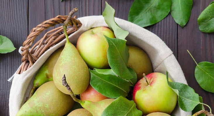 5 benefits of apples and pears that will make you feel great