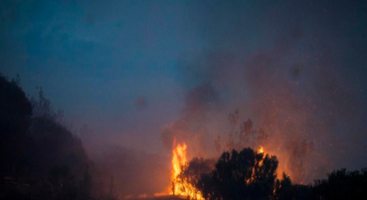 [GALLERY] A look back at the full picture of the Knysna fires, one year on