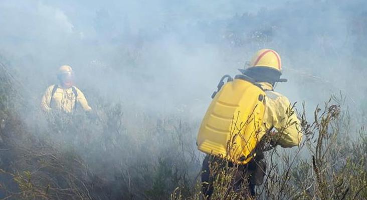 WC fire crews still battling Overstrand blaze