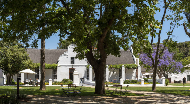 W Cape govt coughs up R12m for tourism wine industry relief