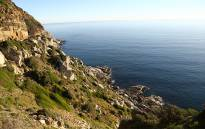 A view of the ocean from a lookout on Chapmans Peak Drive. Picture: Leah Rolando/Primedia