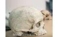 A screengrab of earliest human fossils. CNN/screengrab