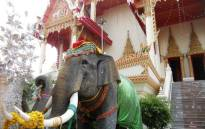 FILE: Elephant statue in Thailand. Picture: Katharyn Williams-Jaftha/EWN.