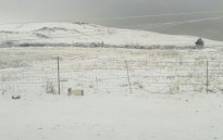 Snow. Picture: Snow Report official Facebook page.