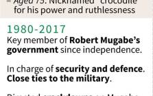 Profile of Emmerson Mnangagwa, who will be sworn in as Zimbabwe's new interim president on 24 November 2017.