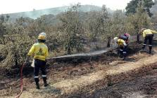 Firefighters extinguish a fire in Helderberg on 4 January 2015. Picture: @CPFPA1