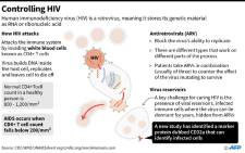 Graphic on how HIV attacks immune cells, and how the condition is treated with antiretrovirals.