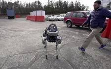 A screen grab from CNN's report on robotic dogs being kicked. Picture: CNN