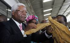 FILE: This picture taken on 19 February 19 2014 shows Zimbabwe finance minister Ignatius Chombo inspecting a leaf as he officially opens the annual Zimbabwe tobacco marketing season in Harare at the Tobacco Sales Floors. Picture: AFP.