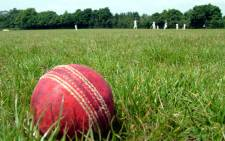 Cricket ball. Picture: Sxc.hu.