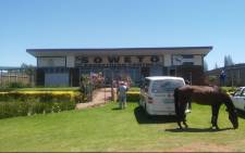 The Soweto Equestrian Centre in Rockville, Soweto. Picture: Winnie Theletsane/EWN