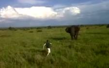 Ranger Brian Masters has been fired by SINGITA after a video where he charges an elephant went viral on YouTube.