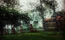 Rain. Picture: Katharyn Williams-Jaftha/EWN.