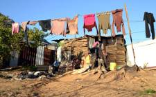 A shack dweller's washing dries in the wind in the Langrug informal settlement outside Franschhoek