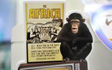 """An advertising panel shows KT&G's new brand of cigarettes """"This Africa"""" at a convenience store in Seoul on 23 October 2013. Picture: AFP"""