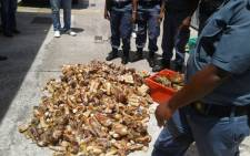 Cape Town police stand next to more than 2,500 undersized crayfish tails and 73 whole crayfish found during a raid in Manenberg. Picture: Twitter/@SAPoliceService.