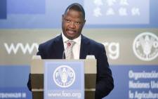 FILE: Secretary for Parliament Gengezi Mgidlana is pictured in 2010 at a summit in Rome. Picture: The Food and Agriculture Organisation of the United Nations/Flickr.
