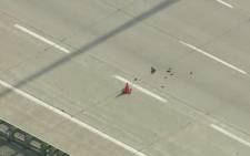 A duck and her ducklings cross a busy freeway in Canada. Picture: CNN