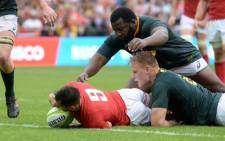 South Africa went 20-17 ahead with six minutes left but some sloppy defending allowed Wales to grab the late try. Picture: @Springboks/Twitter