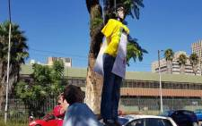 The effigy of Gauteng Education MEC Panyaza Lesufi being hung in a tree by two men in Pretoria. Picture: @Lesufi/Twitter