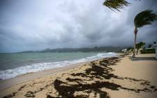 A picture taken on 5 September 2017 shows a view of the Baie Nettle beach in Marigot, with the wind blowing ahead of the arrival of Hurricane Irma. Picture: AFP.