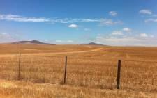 FILE: An open field. Picture: EWN