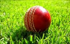 Cricket ball. Picture: Freeimages.com