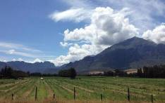 FILE: The Wolseley Farm in the Western Cape. Picture: EWN.