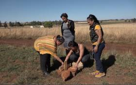 The family of Arnold Douglas Swartz visit the area near Walkerville where his body was found. Picture: Louise McAuliffe/EWN