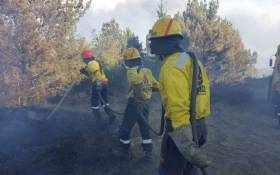 FILE: Firefighters from Working on Fire put out a fire that broke out in the Knysna area on 6 July 2017. Picture:@wo_fire /Twitter