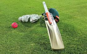 A pink ball that will be used during South Africa's day/night encounter with Zimbabwe at St George's Park in Port Elizabeth. Picture: @OfficialCSA/Twitter.
