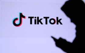 New TikTok feature lets you animate still pictures