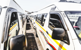 Taxi industry built on 'survival of the fittest' says Cato as services resume